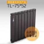 TL-75× 52散热器