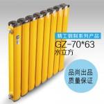 GZ-70×63水立方散热器