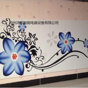 碳晶墙暖厂家直销 鸿宇HY-500W碳晶墙暖 远红外墙暖壁画沧州碳晶墙暖价格 济南碳晶墙暖报价 北京碳晶墙暖 批发价格