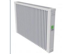 德国原装进口爱热福T5电热供暖器  节能电暖器 暖气片