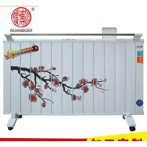 暖博尔 厂家直销  壁挂式落地式碳纤维电暖器  智能取暖 恒温快自动关闭 节能电暖器