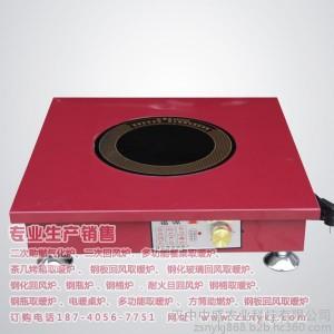 中盛炉具c家用取暖炉电陶炉多功能取暖炉 电炉丝 发热管 电火盆电暖桌炉