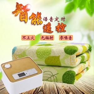 国皓GH-09新一代水暖电热毯产品超静音水循环老人小孩孕妇可以睡安全无辐射不上火不干燥不怕水 国皓水暖毯