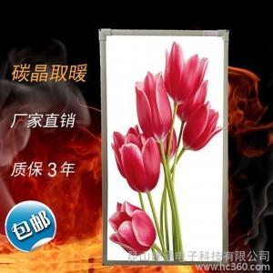 壁挂式电暖器节能碳晶发热板碳晶取暖器壁画墙暖家用远红外电热板