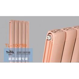 TL-100x80散热器