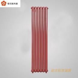钢制50x25圆散热器