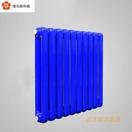 钢制60x30双柱新片头散热器