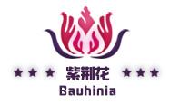 紫荆花散热器
