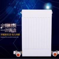 铜铝复合板式100*80暖气片|家用卫浴采暖散热器|世纪百盛