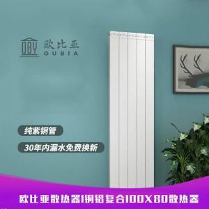 欧比亚铜铝复合100×80散热器