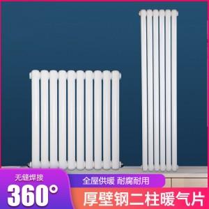 津生钢制散热器 家用壁挂式水暖暖气片集中采暖自采暖散热